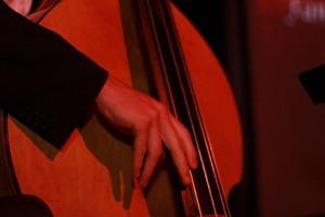Coverband Hochzeitsband Partyband Gentle Session aus Freiburg - Paket: Unplugged